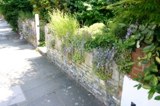 A rustic Wall and rockery style plants are homely and comforting