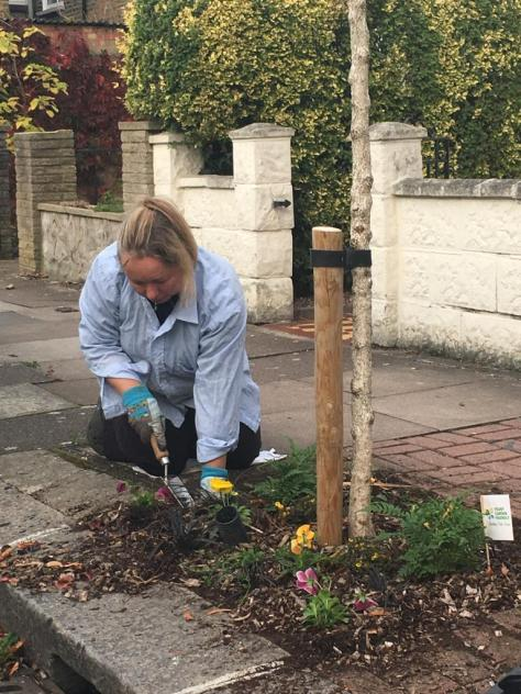 resident planting